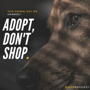 Save Animals | World Animal Day Quotes