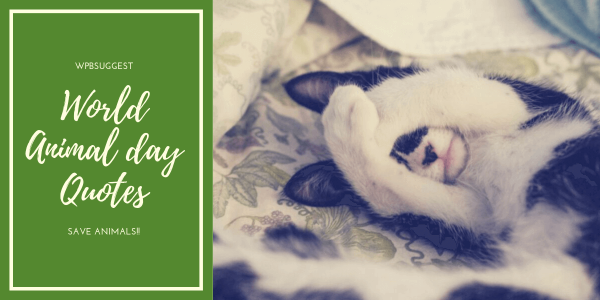 World Animal Day Quotes | 2019