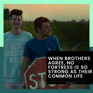 Funny Brother Quotes
