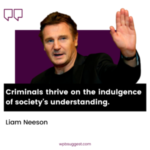 Liam Neeson Quotes About Criminal