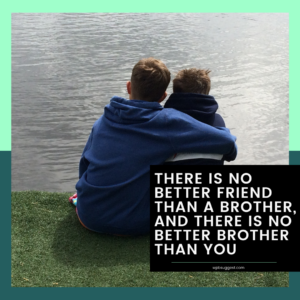 A brother's Love Quote