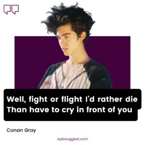 More Conan Gray Quotes