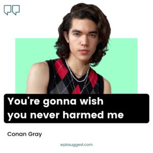 Conan Gray Cool Quotes
